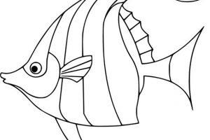 hình con cá tô màu