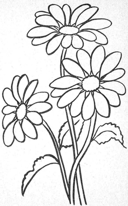 tranh tô màu hoa hướng dương đẹp