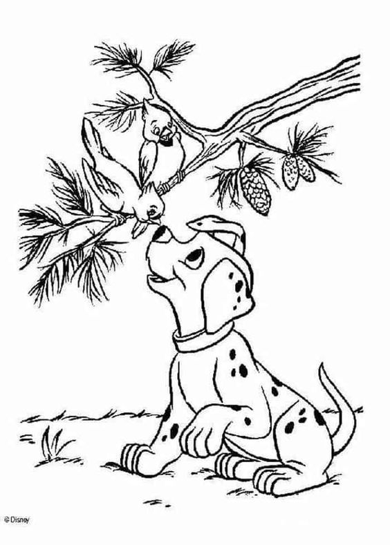 tranh tô màu con chó và chú chim