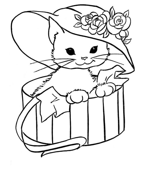 hình tô màu con mèo trong hộp quà