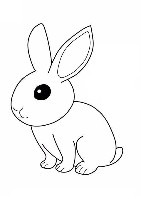 hình tô màu con thỏ