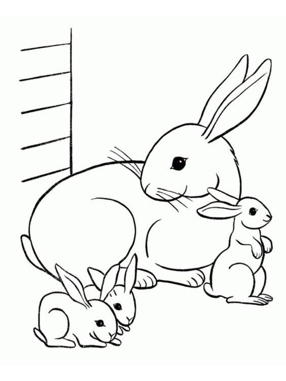 hình tô màu con thỏ mẹ và thỏ con