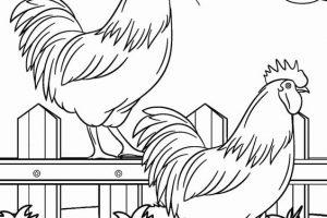 hình tô màu con gà trống